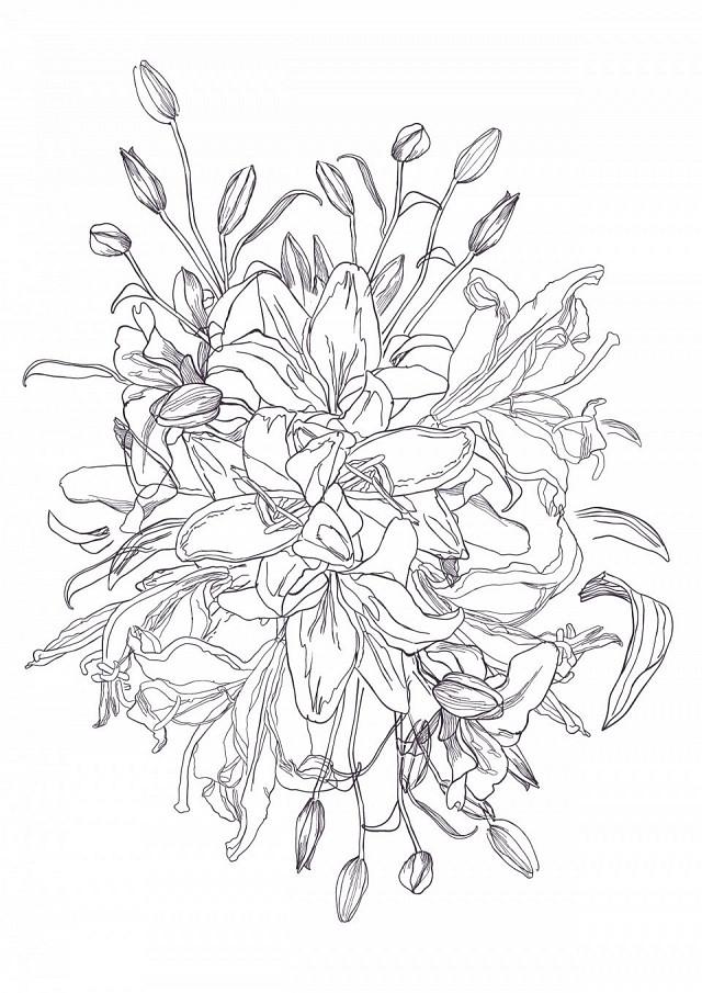 FTFA - Lilies